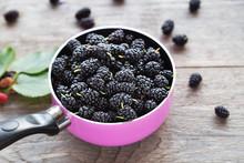 Berries Black Mulberry