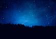 canvas print picture - Nachthimmel mit Sternen und Wald-Silhouette - Textur