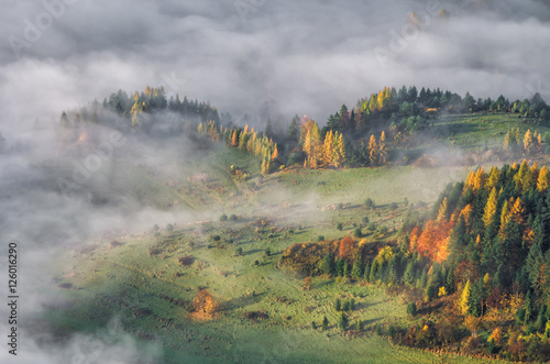 Poster Taupe Morning mists in Pieniny mountains, autumn, Poland