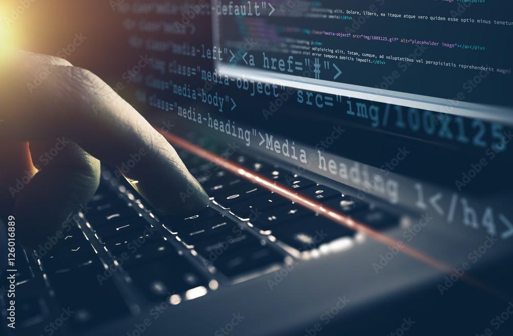 Fototapety, obrazy: Web Development Work Concept