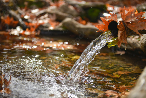 Valokuva  çeşme suları ve sonbahar konsepti