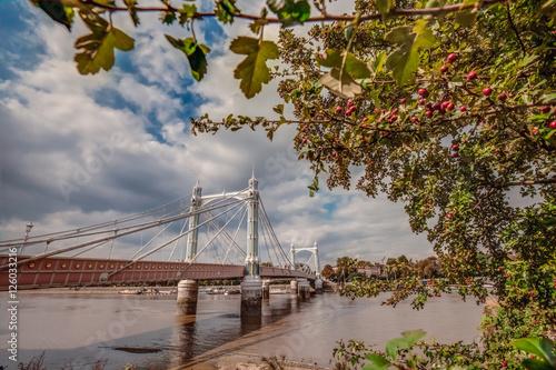 Chelsea Bridge in autumn Poster
