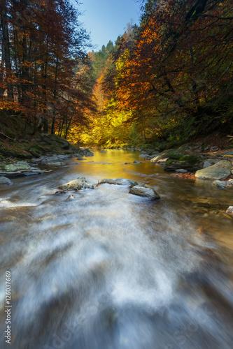 rzeka-w-irati-lesie-w-jesieni