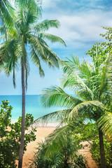 Fototapeta Eko Beach