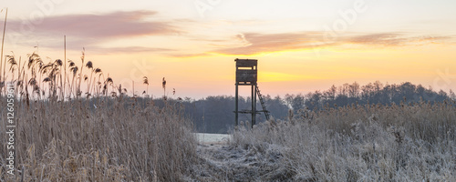Aluminium Prints Hunting Hunting tower in the frosty morning