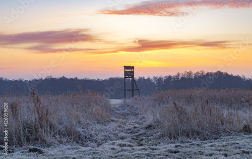 Foto op Canvas Jacht Hunting tower in the frosty morning