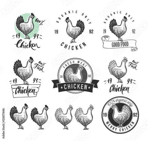 Photo Chicken product logotypes set