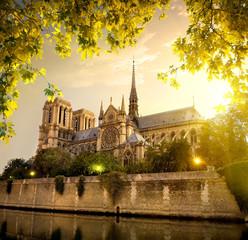 Notre Dame in France