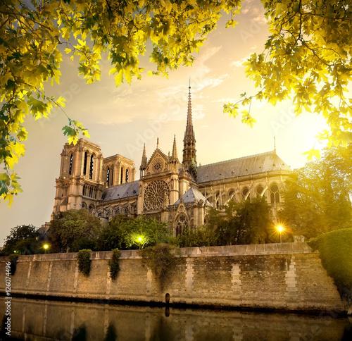 Fotografia  Notre Dame in France