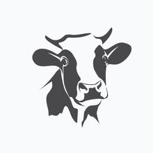 Holstein Cow Portrait Stylized...
