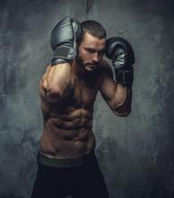 Brutal Boxer Fighter On Grey Background.