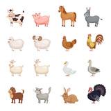 Fototapeta Fototapety na ścianę do pokoju dziecięcego - Farm animals set in flat style.