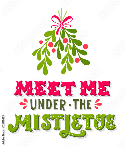 Obraz na plátně Meet me under the mistletoe
