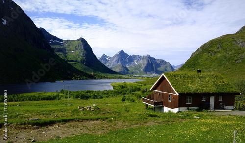 Garden Poster Scandinavia Grass covered house