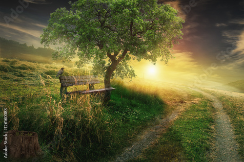 Obrazy wieloczęściowe Droga do wzgórza