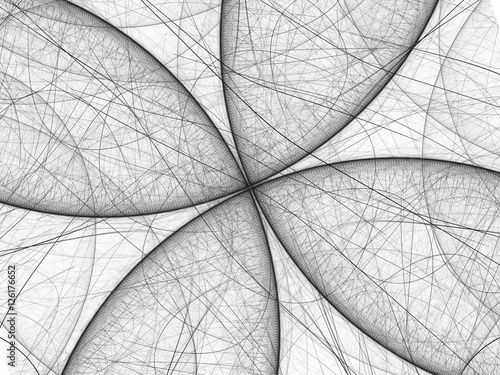 Fotografía  Black and white butterfly fractal