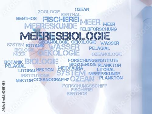 Fotografie, Obraz  Meeresbiologie