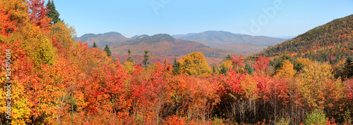 fototapeta na drzwi i meble White mountain national forest in New Hampshire