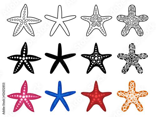 Starfish icon set on white background Canvas Print