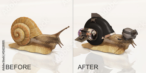 Fotografía  snail, before and after upgrade, 3d rendering
