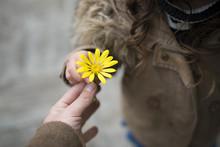 黄色い花を手渡す親子...