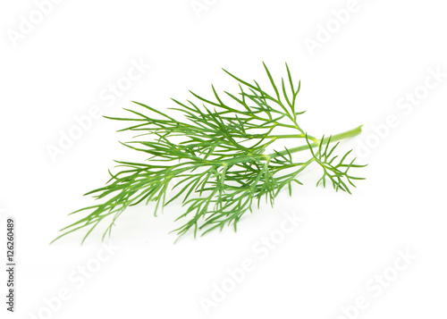 Green dill isolated on white background. Studio macro Fotobehang