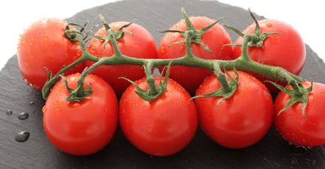 alignement de petites tomates