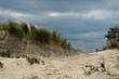 Sandy beach with grass