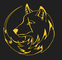 Yellow Wolf On The Black Background