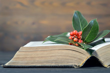 Christmas Berries And Old Book