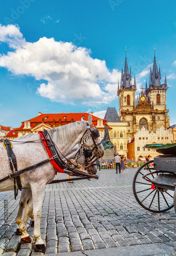 Poster Prague horse-drawn carriage in Old Town Square in Prague, Czech Republic