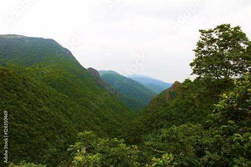 Fotografie, Obraz  The magnetic canyon at Daringbadi