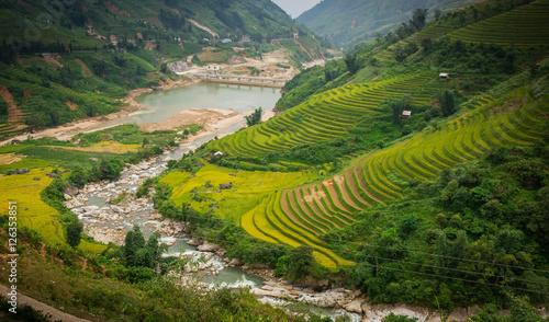 Fotografie, Obraz  Sapa rice field, rice terraces, Sapa valley, rice field on terraces in Sapa, Vietnam