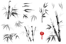 Bamboo Leaves Set. Watercolor ...