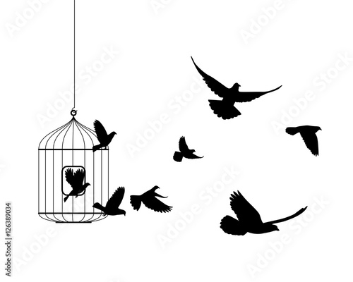 Liberation symbol. Birds flying out of cage Canvas Print
