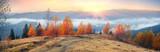 autumn's mystery - 126391070