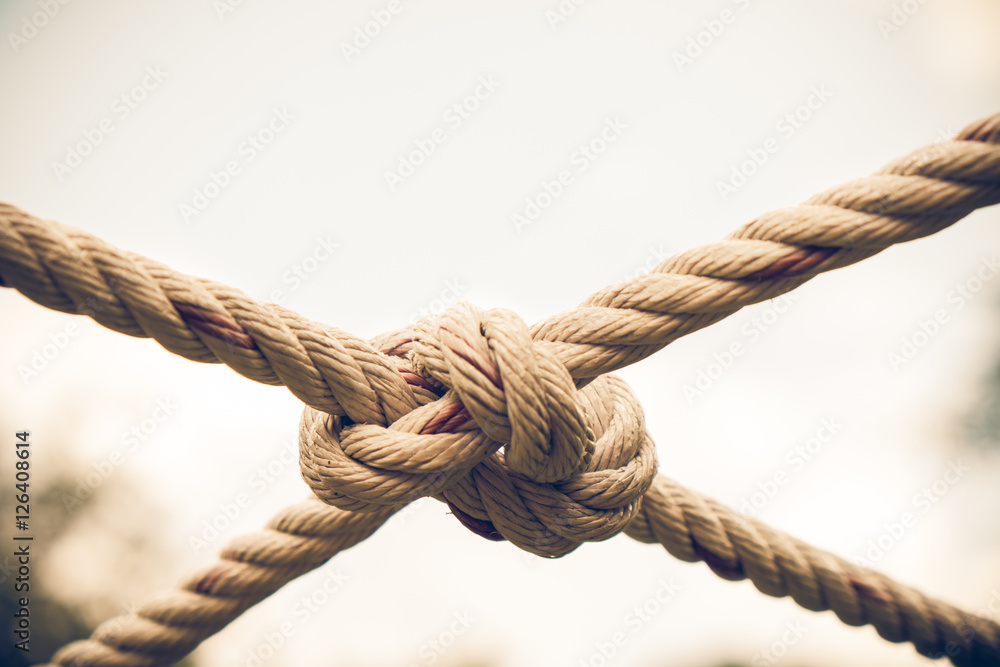 Fototapety, obrazy: Close up Coil of rope with nature background.