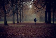 Mann Läuft Allein Durch Herbstwald