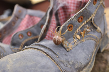 Old Forgotten Shoes With A Big...