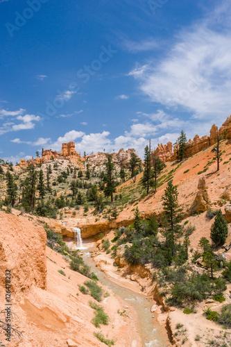 Fotografie, Obraz  Bryce Canyon, Mossy Cave Trail