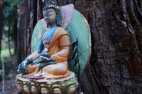 Bunter Buddha sitzt vor einem Baumstamm und meditiert. Poster