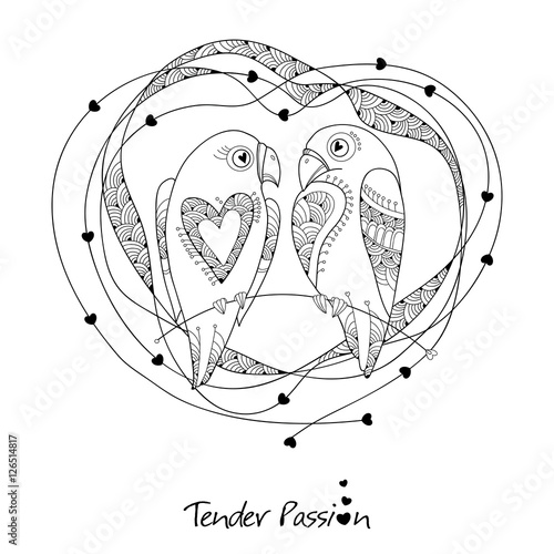 Vector cute parrots couple in contour style. Outline birds and ...