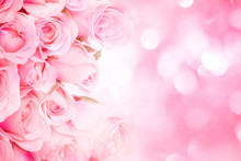Close Up Sweet Light Pink On Pink Abstract Lighting Background
