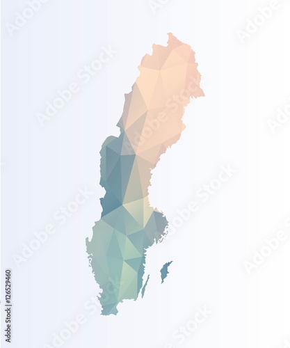 Cuadros en Lienzo Polygonal map of Sweden