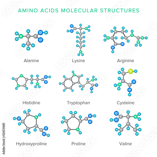 Vector molecular structures of amino acids isolated on white set Canvas Print