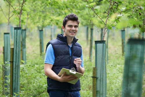 Photo  Forestry Worker With Clipboard Checking Young Trees