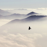 Silhouettes of mountains in the mist and bird flying in warm ton - 126546824