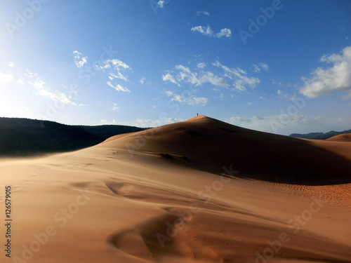 Fotografia, Obraz  Windswept pink sand dune national park in Utah, USA