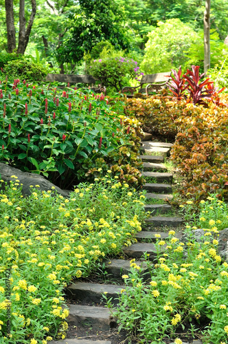 Foto op Canvas Tuin Rock stair in flower garden