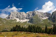 Plateau Of Montasio With Green Pastures In Julian Alps (Jof Di Montasio). Friuli, Italy